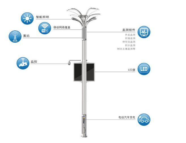 奇迹智慧傅东生:城市路灯杆的超级物种 乐平